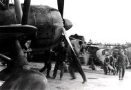 Asisbiz Fiat CR 42 Falco 18.JG56 18G56S85aSA 85 12 Ursel Belgium 1940 01