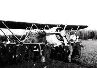 Asisbiz Fiat CR 42 Falco 18.JG56 18G56S85aSA moving a bogged fighter Ursel Belgium 1940 01