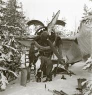 Asisbiz Dornier Do 17Z Lentolaivue 46 DNxx at Mensuvaara Finland 7th Jan 1944 113319