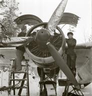 Asisbiz Dornier Do 17Z Lentolaivue 46 DNxx at Mensuvaara Finland 7th Jan 1944 113320