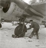 Asisbiz Dornier Do 17Z Lentolaivue 46 DNxx at Mensuvaara Finland 7th Jan 1944 113329
