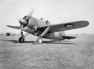 Asisbiz Brewster Buffalo MkI Fleet Air Arm August 1940 01