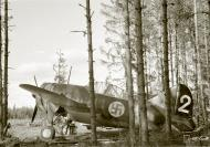 Asisbiz Brewster Buffalo MkI FAF 2.LeLv24 BW352 at Selanpaa Airport Finland 24th Jun 1941 20753
