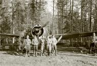 Asisbiz Brewster Buffalo MkI FAF 2.LeLv24 BW352 at Selanpaa Airport Finland 24th Jun 1941 20756