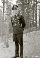 Asisbiz Brewster Buffalo MkI FAF 2.Lelv24 BW393 Hans Wind with 33 kills at Lake Suulajarvi 19th Sep 1943 03