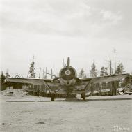 Asisbiz Brewster Buffalo MkI FAF LeLv24 BW374 at Suulajarvi Finland 8th May 1944 04