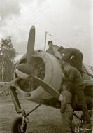 Asisbiz Brewster Buffalo MkI FAF LeLv44 BW3xx at Immolan 15th Jun 1944 02