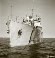 Asisbiz Finnish Navy VML 17 Minelayer ML Ruotsinsalmi off the enemy coast 12th Aug 1942 102613