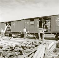 Asisbiz Finnish Uuksu Aunus railway network loading sleepers at Uuksu station Uuksu 13th Aug 1942 103507