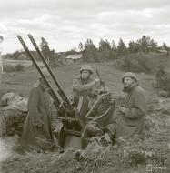 Asisbiz Finnish air defense 20mm flak battery stationed at Vyborg 18th Jun 1944 153463