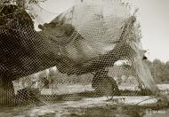 Asisbiz Finnish aircraft under camouflage netting at Mikkeli Joensuu 4th Sep 1942 107070