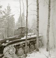 Asisbiz Finnish and German Panzer II forces advance along the Kiestinki road towards Jelettijarvi 5th May 1942 86056