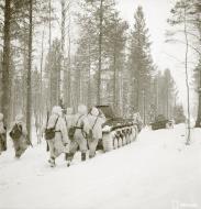 Asisbiz Finnish and German Panzer II forces advance along the Kiestinki road towards Jelettijarvi 5th May 1942 86060