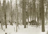 Asisbiz Finnish and German forces advance along the Kiestinki road towards Jelettijarvi 5th May 1942 86091