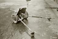 Asisbiz Finnish army 37mm anti tank gun 37PstK36 bought 114 pieces from Bofors photographed 28th Oct 1943 141740