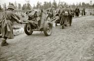 Asisbiz Finnish army moving forward Muolaa 28th Aug 1941 42349