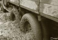 Asisbiz Finnish army vehicles having to deal with the winter thaw and muddy conditions Aunus Levina 17th Apr 1942 85066