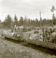 Asisbiz Food supplies are loaded onto the narrow gauge railway network at Syvari 13th Aug 1942 103575