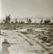 Asisbiz Soviet BT7M tank knocked out near the cemetery at Sallan 16th Oct 1941 58411