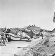 Asisbiz FAF captured Polikarpov I 16 coded IR101 powered by Shvetsov M 25 Finland 9795