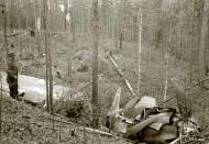 Asisbiz Soviet IL2 Sturmovik Red 37 shot down by flak near Rukajarvi 24th Aug 1944 161814