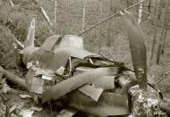 Asisbiz Soviet IL2 Sturmovik Red 37 shot down by flak near Rukajarvi 24th Aug 1944 161815
