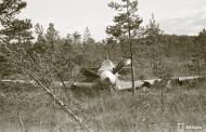 Asisbiz Soviet Yakovlev Yak 7 White 18 belly landed Pulsa Vihosinkyla 2nd Sep 1944 01