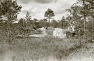 Asisbiz Soviet Yakovlev Yak 7 White 18 belly landed Pulsa Vihosinkyla 2nd Sep 1944 05