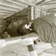 Asisbiz Fokker D XXI FAF 2.LeLv12 FR83 Kuuttilahti Nurmoila 24th Feb 1942 10757