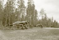 Asisbiz Fokker D XXI FAF 2.LeLv30 Red 9 Tiiksjarvi Finland July 1941 79778