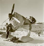 Asisbiz Fokker D XXI FAF 3.LeLv30 FR144 at Tiiksjarvi Airport 4th Nov 1941 62491