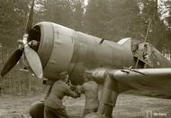 Asisbiz Fokker D XXI FAF LeLv12 FR98 at Aunus 18th Oct 1943 141199
