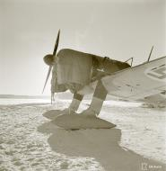 Asisbiz Fokker D XXI FAF fitted with snow skis for winter landings Tiiksjarvi Airport 4th Nov 1941 62520