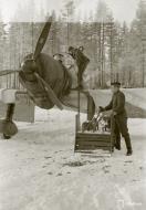 Asisbiz Fokker D XXI FAF maintenance work minus 26 Tiiksjarvi Airport 1st Nov 1941 09