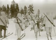 Asisbiz Finnish forcs moving forward with their reindeer Janiskoski area Winter War 20th Feb 1940 5138