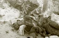 Asisbiz Soviet forces were decimated around Tenhamonmaki area West Lemetti Winter War 2nd Feb 1940 a 634