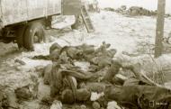 Asisbiz Soviet forces were decimated around Tenhamonmaki area West Lemetti Winter War 2nd Feb 1940 a 645