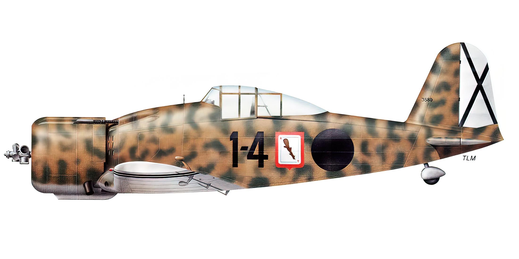 Fiat G50 Freccia Aviacion Nacional 27 Gruppo de Caza 4 MM3580 Sevilla Tablada Spain Jun 1939 0B