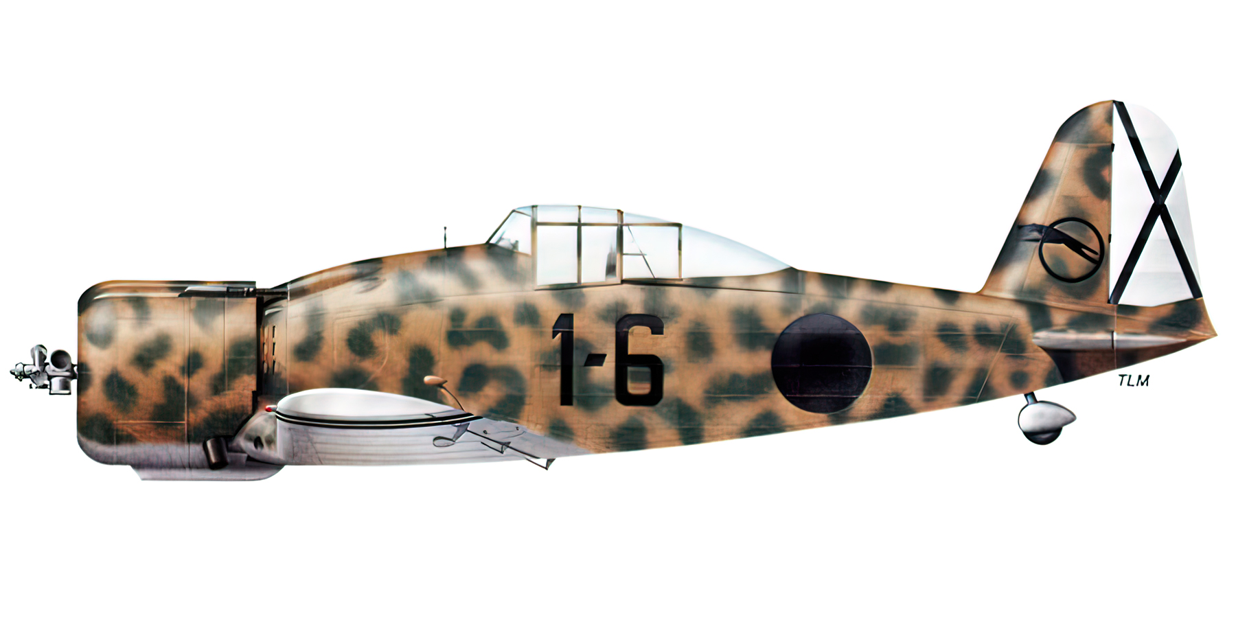 Fiat G50 Freccia Aviacion Nacional 27 Gruppo de Caza 6 Sevilla Tablada Spain Jul 1939 0A
