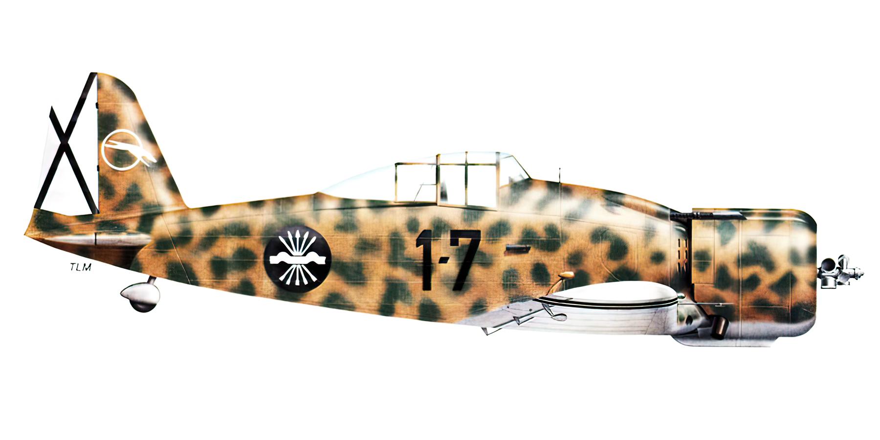 Fiat G50 Freccia Aviacion Nacional 27 Gruppo de Caza 7 MM3582 Sevilla Tablada Spain Jun 1939 0B
