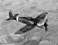 Asisbiz Focke Wulf Fw 190A4 WNr 50046 in USAAF hands with nonstandard markings 02