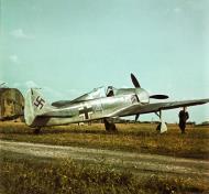 Asisbiz Focke Wulf Fw 190A2 4.JFS4 Blue 4 1942 01