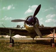 Asisbiz Focke Wulf Fw 190A2 4.JFS4 Blue 4 1942 02