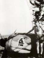 Asisbiz Focke Wulf Fw 190A cowling showing 2.JG11 emblem 01