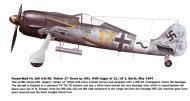 Asisbiz Focke Wulf Fw 190A8 12.(Sturm)JG3 (Y17+~) Willi Unger 1944 0A
