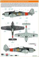 Asisbiz Focke Wulf Fw 190A8 6.JG300 (Y15+ ) Adalbert Koch Lobnitz Germany 1944 0B