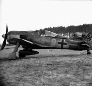 Asisbiz Focke Wulf Fw 190A8 6.JG300 (Y9+ ) Hannes Theiss Lobnitz 1945 01