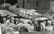 Asisbiz Focke Wulf Fw 190A8 5.JG301 White 21 WNr 682989 Germany 1945 01