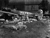 Asisbiz Focke Wulf Fw 190A8 5.JG301 White 21 WNr 682989 Germany 1945 03