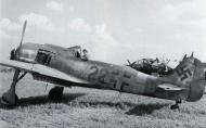 Asisbiz Focke Wulf Fw 190A9 6.JG301 (R22+ ) WNr 490044 Landensalza 1945 03